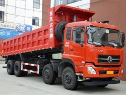 dongfeng dalishen 8x4 dump truck with 12 wheels