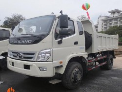 6wheels FOTON 4ton small dump tipper truck