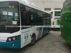 8 Meters Electric Battery Bus with High Quality