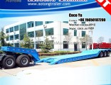 Detachable Gooseneck 3 Axles Lowbed Trailer for South Africa