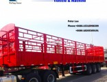 3 Axles Multi-Function Cargo Truck Trailer with 12 Container Locks