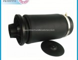 Rear Air Suspension Shock Absorber Air Bag for Mercedes Benz W164 Ml Class