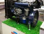 Chinese Diesel Engine and Diesel Engine Parts for Generator