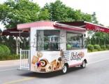 Food Cart /Food Van with Kitchen Equipment for Sale
