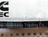 C3911580 Dongfeng Cummins Engine Part/Auto Part Fan Belt