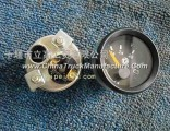 [3812N-010] Dongfeng Cummins EQ153 voltage meter assembly