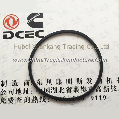 C3902089 3940386 Dongfeng Cummins Engine Part/Auto Part/Spare Part /Car Accessiories Water Pump Seal