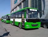 7m 34-36seats City Bus Hot Sall
