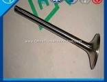 Exhaust Valve for Engine Part (VG1246050022)