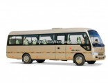 Mudan 152 HP Coaster Type 31 Seats Minibus
