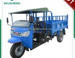 Wuzheng Three Wheel Truck with Wind Shield (WE3B2521101)