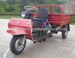 Waw Three Wheel Motor Vehicle (WC1B8518101)