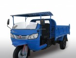 Cargo Diesel Motorized Three Wheel Passenger Tricycle