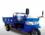 Chinese Diesel Dump Right Hand Drive Tricycle for Sale
