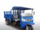 Waw Chinese Diesel Dumpwaw Three Wheel Vehiclefor Sale