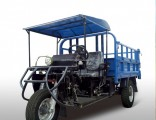 Diesel Motorized 3-Wheel Tricycle for Sale From China