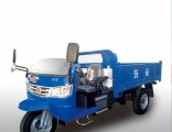 Diesel Chinese Open Cargo Motorized 3-Wheel Tricycle