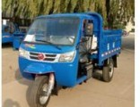 Diesel Open Cargo Motorized 3-Wheel Tricycle