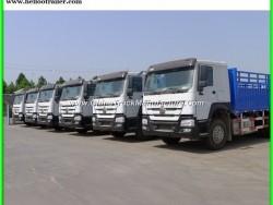 HOWO 8X4 Cargo Truck/ Heavy Duty Bulk Truck (ZZ1317M3861V)