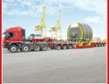 Heavy Duty Hydraulic Multi Axle Modular Trailer (FLY6402MDL)
