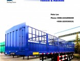 3 Axle Side Wall Open Container Stake Truck Semi Trailer for Heavy Cargo Transportation