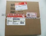 Imported original 3803977/M11/ piston ring