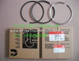 Factory direct sales of Dongfeng Automobile Fittings - piston ring