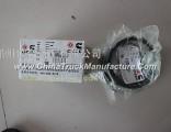 Dongfeng Tian Tian Jin 6CT piston ring