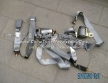 Foton Daimler 1B24982200000 safety belt assembly