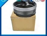 Piston Ring for Engine Part (VG1540030005)