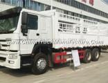 Sinotruk HOWO 371HP Van Cargo Truck