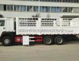 Sinotruk HOWO 6X4 Van Cargo Truck for Sale