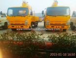 Isuzu Truck Crane Telescopic Boom 4t, 5t, 6.3t, 8t