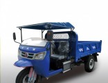 Chinesediesel Motorized Diesel Dump Right Hand Drive Tricycle for Sale