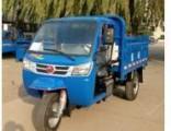 Diesel Open Cargo Motorized 3-Wheel Tricycle