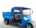 Chinesewaw Diesel Dump Right Hand Drive Tricycle for Sale
